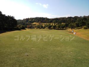 オリエンタルゴルフ倶楽部_INコース_10-2