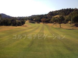 オリエンタルゴルフ倶楽部_INコース_10-5