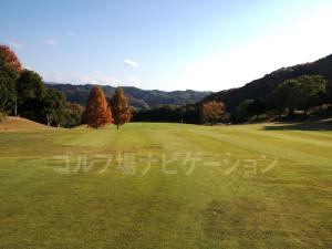 オリエンタルゴルフ倶楽部_INコース_11-3