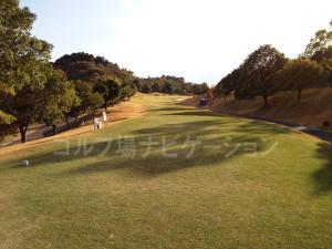 オリエンタルゴルフ倶楽部_INコース_13番ティグランド