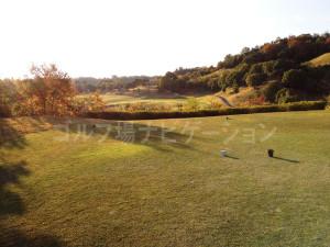 オリエンタルゴルフ倶楽部_INコース_14番ティグランド