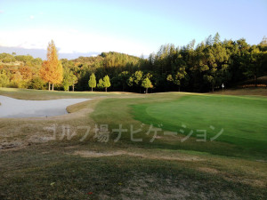 オリエンタルゴルフ倶楽部_インコース_14番グリーン