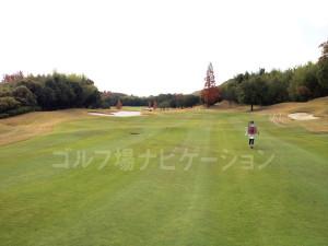オリエンタルゴルフ倶楽部_アウトコース_8-4