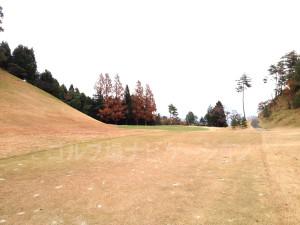 箕面ゴルフ倶楽部_インコース_12-5