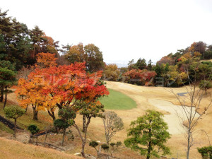 箕面ゴルフ倶楽部_インコース_13-3
