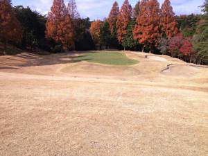 箕面ゴルフ倶楽部_インコース_14-6