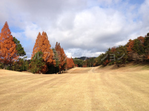 箕面ゴルフ倶楽部_インコース_16-5