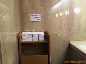 tojo_pine_girls_toilet_2