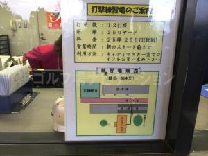 tojo_pine_training_0