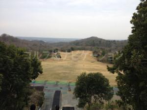 tojo_pine_training_1