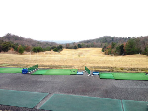 tojo_pine_training_2