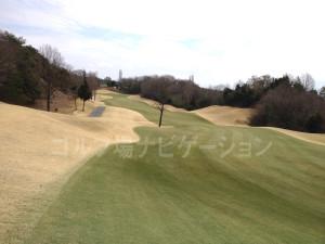 tojo_pine_valley_in_11-4
