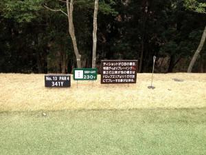 tojo_pine_valley_in_13-1