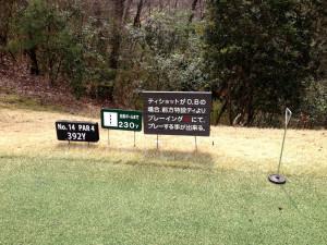tojo_pine_valley_in_14-1
