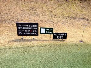 tojo_pine_valley_in_16-1