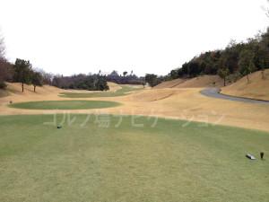tojo_pine_valley_in_18-2
