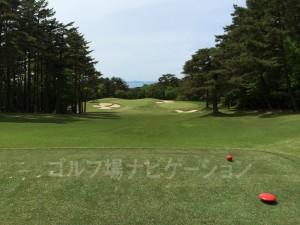 レディースティからの眺め。日本海がちゃんと見えます。