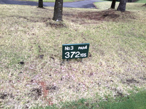 グランディ那須白河ゴルフクラブ WESTコース 3番ミドルホール