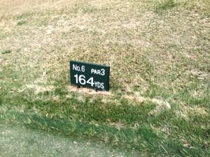 グランディ那須白河ゴルフクラブ WESTコース 6番ショートホール