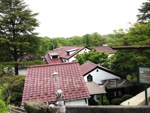 和風ロッジに洋風ホテル、コテージもあるそうです。