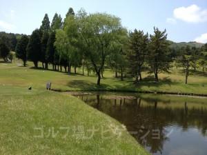 小さな池越えなのでプレッシャーはそれ程ない。鹿が水を飲みにやってきます。