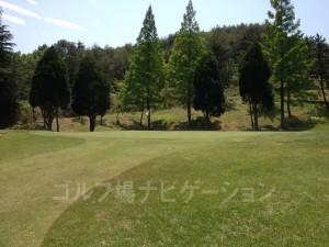 rurikei_naka_7-7