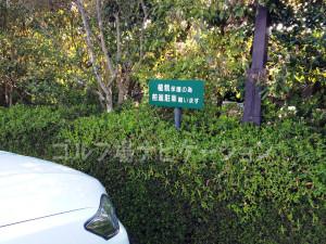 タラオCC駐車場