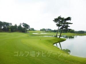 池とバンカーが松の木が見事に調和して美しい