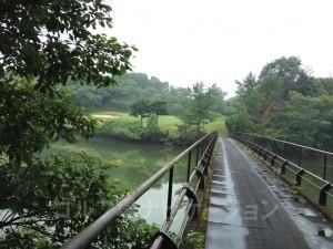 グリーンへはカートで橋を渡ります。