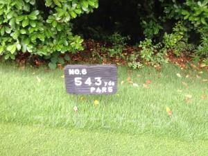播州東洋ゴルフ倶楽部 OUTコース6番ロングホール、レギュラーティ距離表示