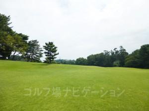 奥に見える観覧車は近くの遊園地「御崎公園」