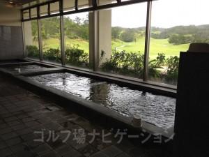 水風呂もあります。