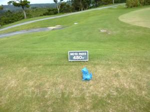 ジ・アッタテラスゴルフリゾート INコース1番ロングホール、バックティからの距離は480ヤード