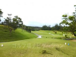 ジ・アッタテラスゴルフリゾート INコース11番ミドルホール、ティグランドからの眺め
