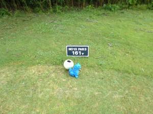 ジ・アッタテラスゴルフリゾート INコース13番ショートホール、バックティからの距離は161ヤード