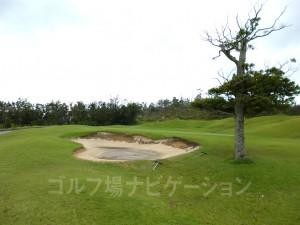 こちらも台風で砂が流れちゃってました。