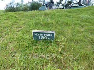 ジ・アッタテラスゴルフリゾート INコース16番ショートホール、バックティからの距離は180ヤード