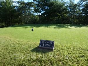 富士スタジアムゴルフ倶楽部 北コース INコース11番ホール、バックティからの距離は530ヤード
