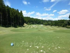 富士スタジアムゴルフ倶楽部 北コース OUTコース6番ショートホール、バックティからの眺め