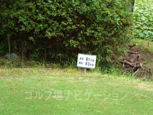 名神竜王カントリー倶楽部 INコース17番ショートホール、フロントティの距離表示