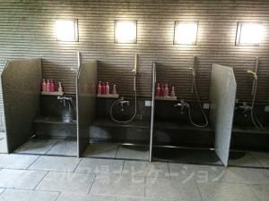 体洗う場所。隣にシャワーがあります。