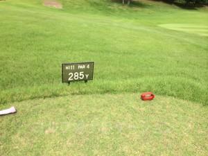 レディスティからの距離は285ヤード。