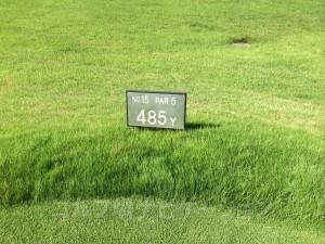レディスティからの距離は485ヤード