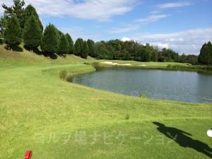 レディスティからの眺め。池越えあり。