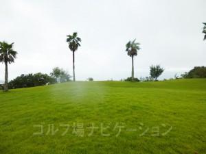 天気が良ければ太平洋を望めます。