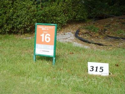 女子トーナメントで使用するティ。距離は315ヤード。