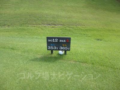 レオグラードゴルフクラブ INコース12番ミドルホール、レギュラーティ(コースガイド、スコアカードの表示より短いです。)