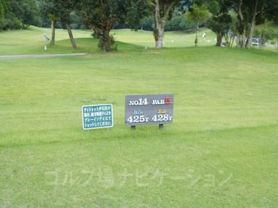 レオグラードゴルフクラブ INコース14番ロングホール、レギュラーティ(コースガイド、スコアカードの距離表示上はレディスティ)