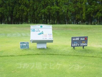 レオグラードゴルフクラブ INコース16番ショートホール、レギュラーティ