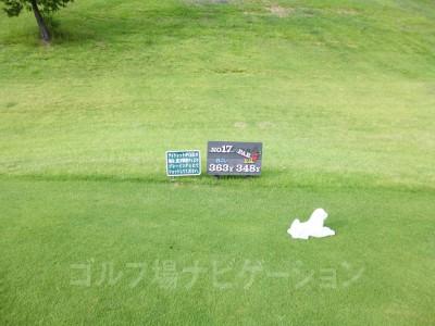 レオグラードゴルフクラブ INコース17番ミドルホール、レギュラーティ(コースガイド、スコアカードの距離表示上はレディスティ)